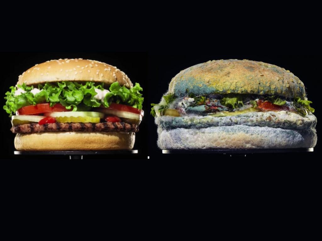 Tại sao thức ăn dễ bị ôi thiu, nấm mốc? Làm thế nào để bảo quản thức ăn.